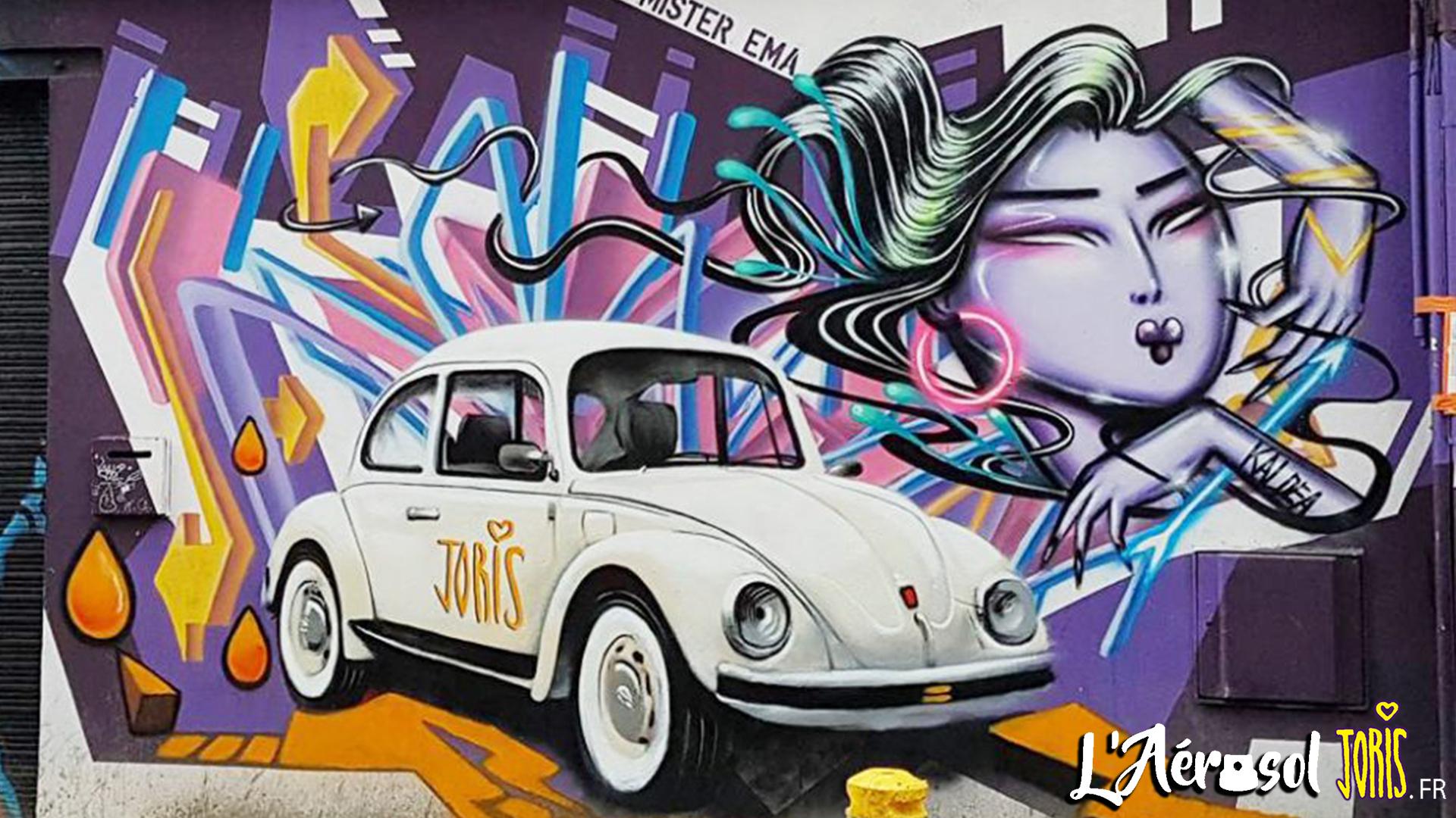 DECORATION-GRAFFITI-FRESQUE-TABLEAU-STREET-ART-PARIS-21