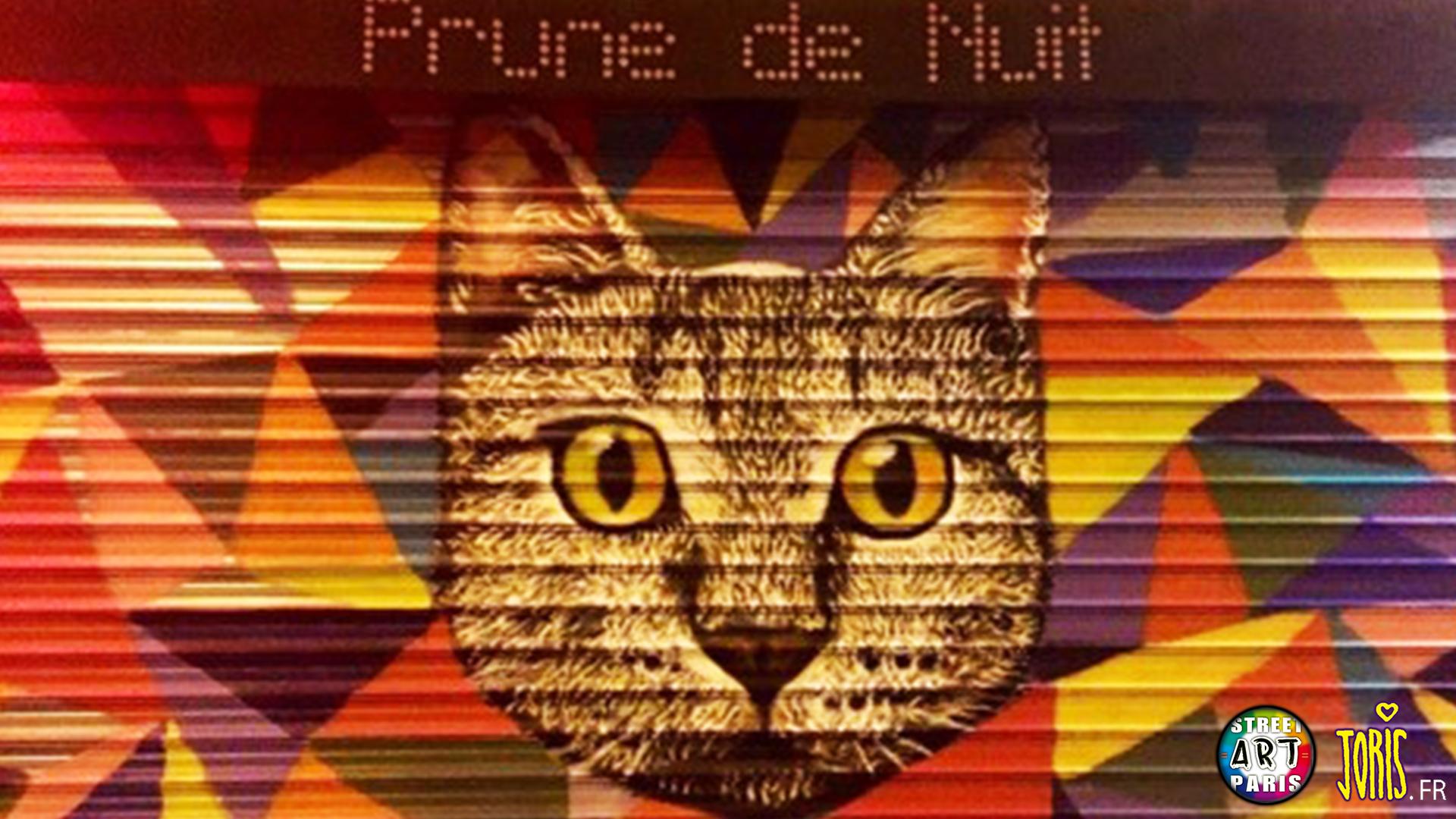 DECORATION-GRAFFITI-FRESQUE-TABLEAU-STREET-ART-PARIS-22